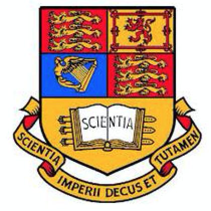 申请帝国理工学院应用生物与生物技术的PS