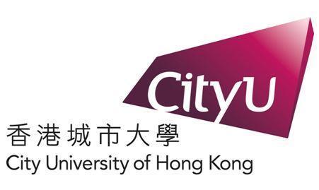 申请香港城市大学电子商业及知识管理硕士的PS