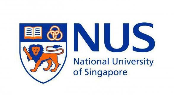 申请新加坡国立大学应用数学与统计学博士的PS片段